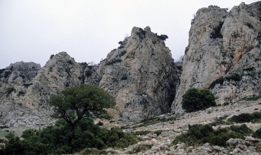 Κτενιάς, το αρχαίον Κρεόπωλον, υψ. 1.635μ. ανάμεσα Αρκαδία –Αργολίδα