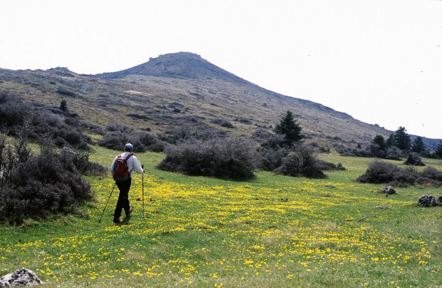 Ο ορεινός όγκος Λιβαδάκι 1.836μ. ανάμεσα Ζήρια καιΧελμό