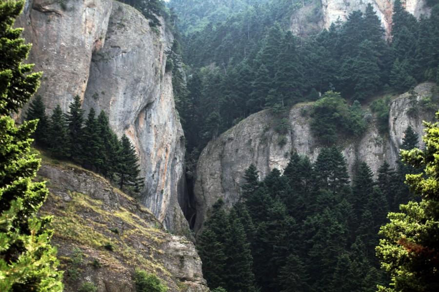 Βουνά Σαραντάπηχου, Πρ. Ηλίας, 1.546 μ.Κορινθίας